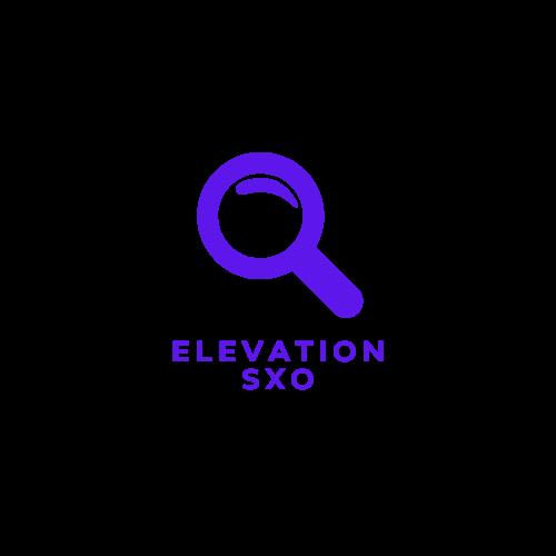 elevation sxo seo pozycjonowanie ui lepsza widoczność w google
